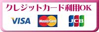 クレジットカード利用OL VISA MASTER